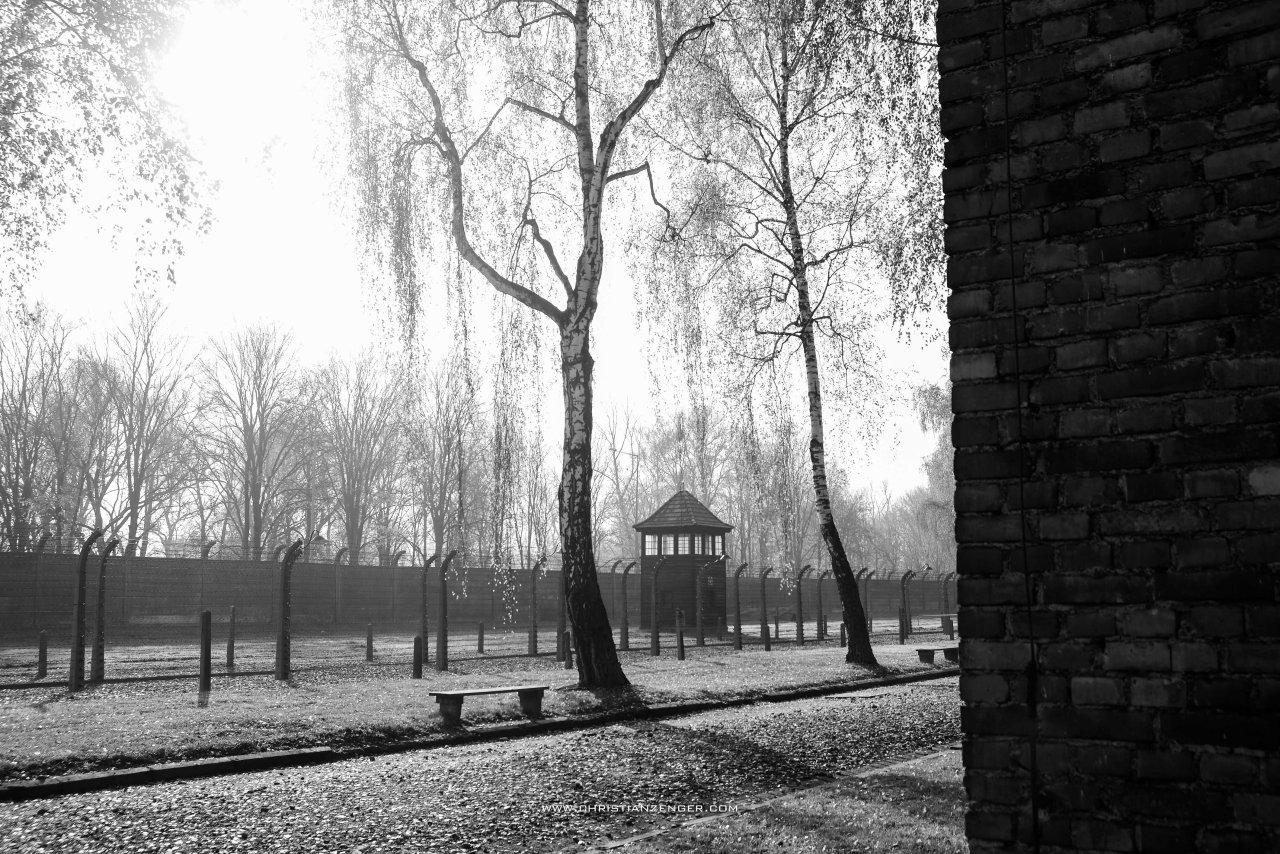 Auschwitz_-6254