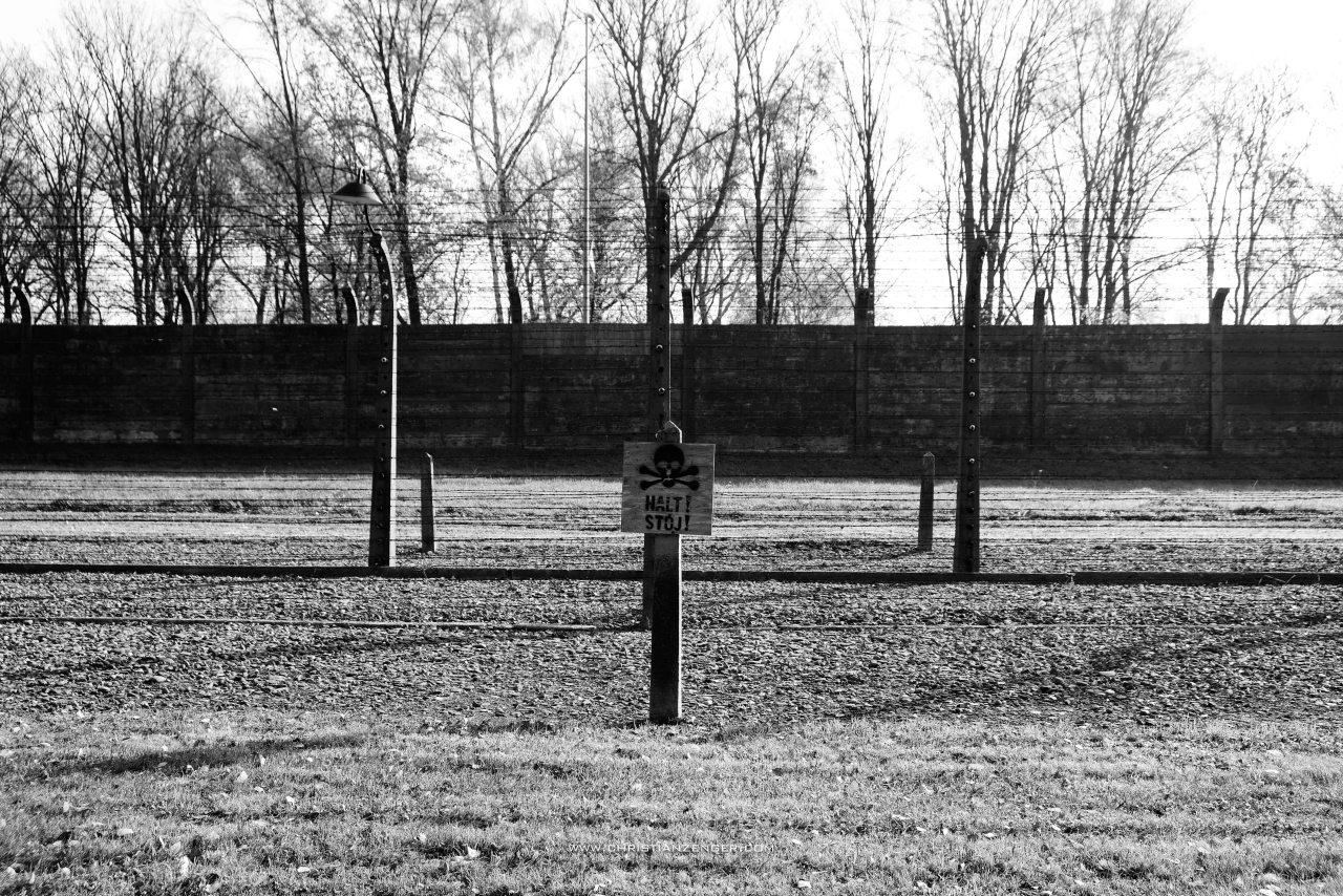 Auschwitz_-6345