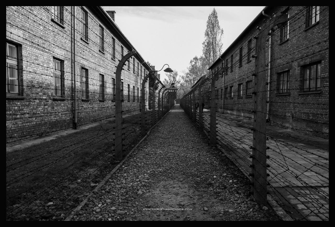 Auschwitz_-6480