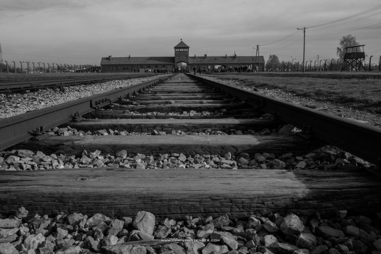 Auschwitz_-6616