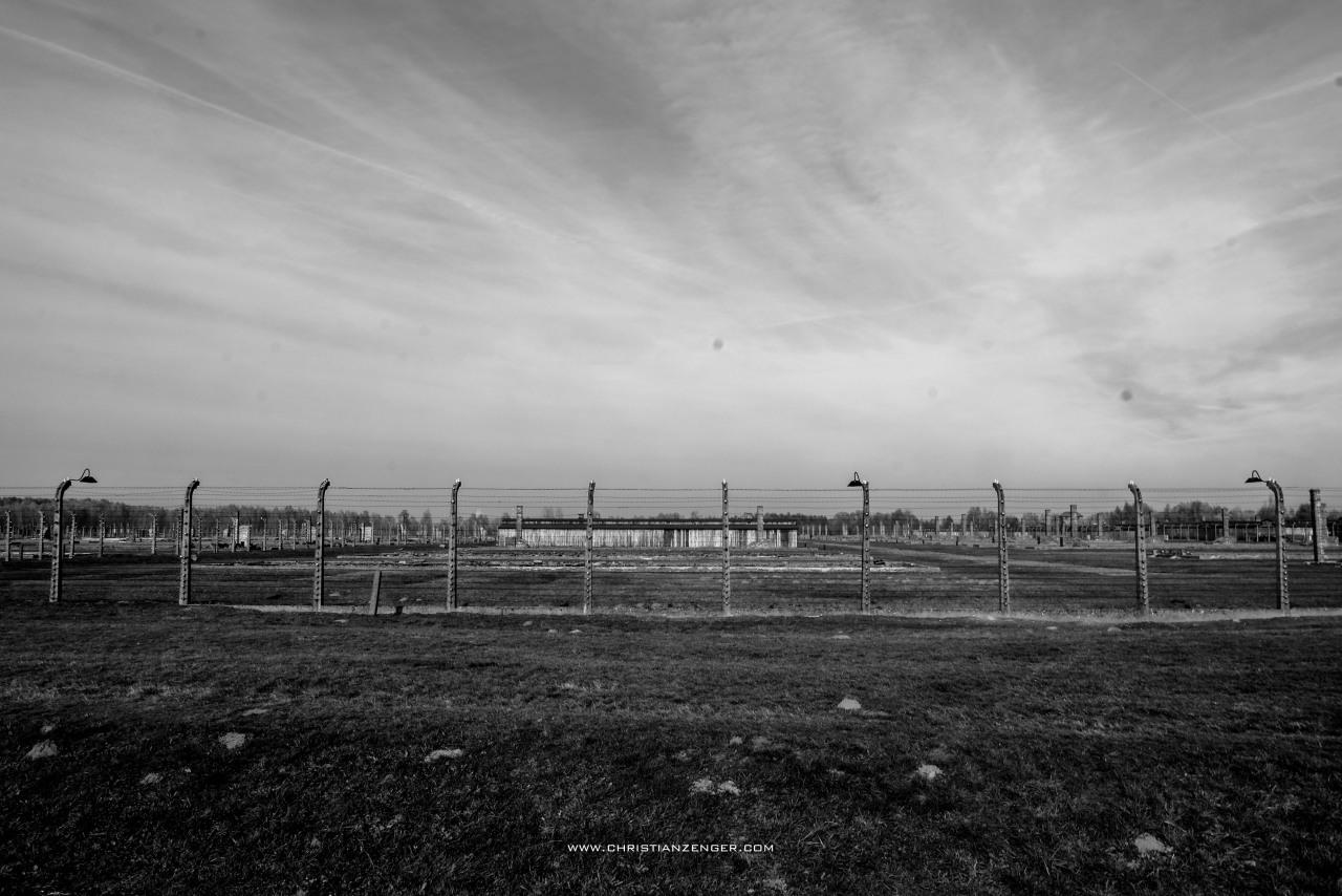 Auschwitz_-6619